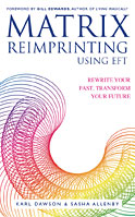 Matrix Reimprinting Using EFT book cover